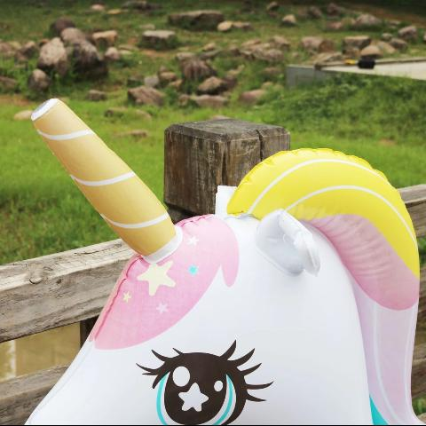 Licorne Gonflable Piscine