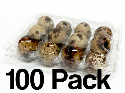 Quail Egg Cartons - 12 Egg Capacity - 100 Pack - FREE shipping