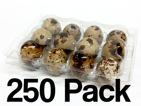 Quail Egg Cartons - 12 Egg Capacity - 250 Pack - FREE shipping