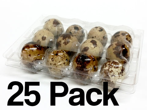 Quail Egg Cartons - 12 Egg Capacity - 25 Pack - FREE shipping
