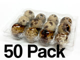 Quail Egg Cartons - 12 Egg Capacity - 50 Pack