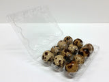 Quail Egg Cartons - 12 Egg Capacity - 500 Pack