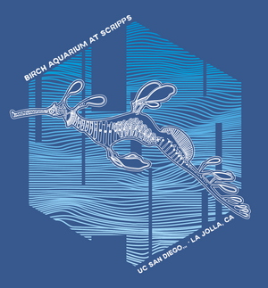 Weedy Seadragon - Adult Tee