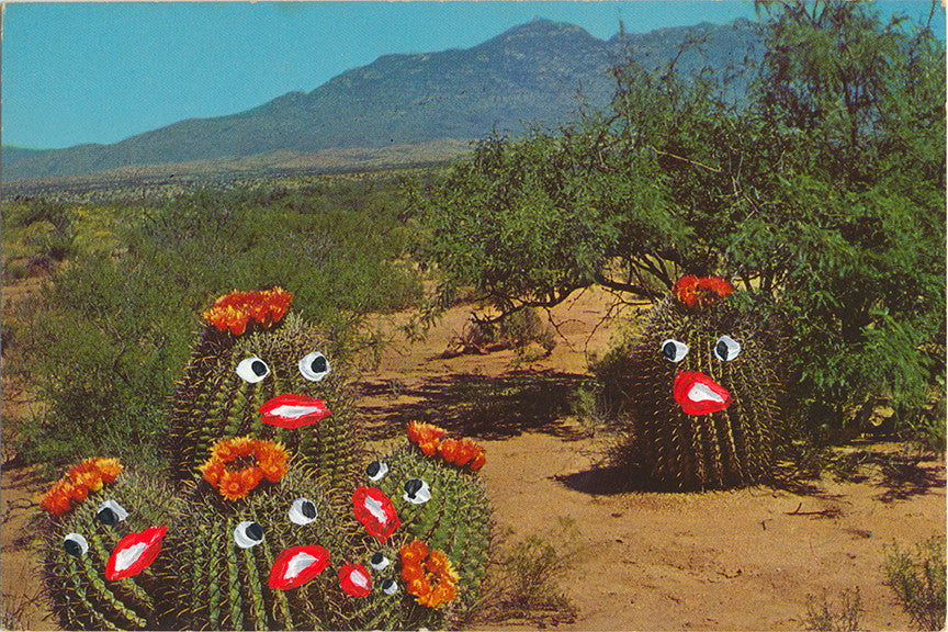 The Frightened Cacti