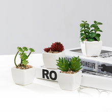 Load image into Gallery viewer, Set of 4 Different Mini Artificial Succulent Plants Potted in Cube-Shape White Ceramic Pot