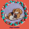 Pup Cookie!