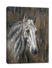 Load image into Gallery viewer, 'Texas Horse ' Oil Painting Print on Wrapped Canvas