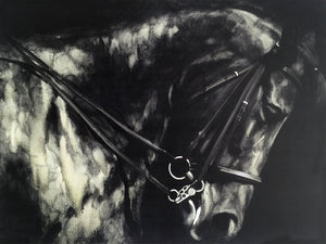 'Horse in the Dark II' Oil Painting Print on Wrapped Canvas