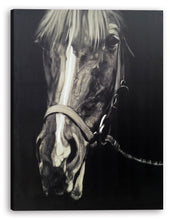 Load image into Gallery viewer, 'Horse in the Dark III' Oil Painting Print on Wrapped Canvas