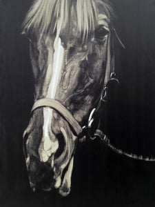 'Horse in the Dark III' Oil Painting Print on Wrapped Canvas