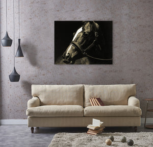 'Horse stopped to look back' Oil Painting Print on Wrapped Canvas