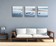 "Load image into Gallery viewer, ""A Clan of Seagulls"" Hand Painted on Wrapped Canvas 20x20""-3piece"