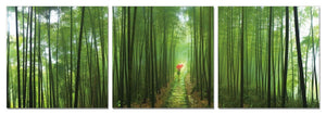 "Green Walk 3-Panel Acrylic Wall Art - 24"" x 24 ""H (each) - 72"" x 24""H"