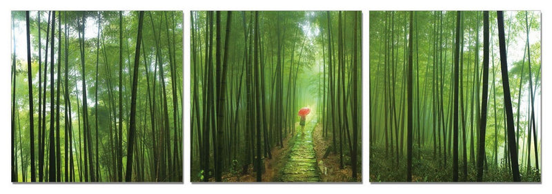 Green Walk 3-Panel Acrylic Wall Art - 24