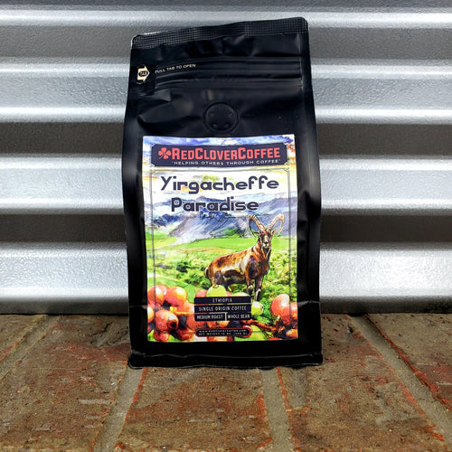 Yirgacheffe Paradise: Medium Roast - Red Clover Coffee