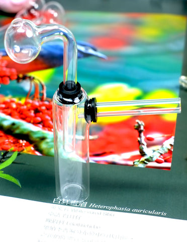 Glass on Glass Vial Oil Burner Bubbler Pipe
