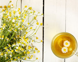 Ingredient Series: Should I Put Chamomile Essential Oil On My Skin?