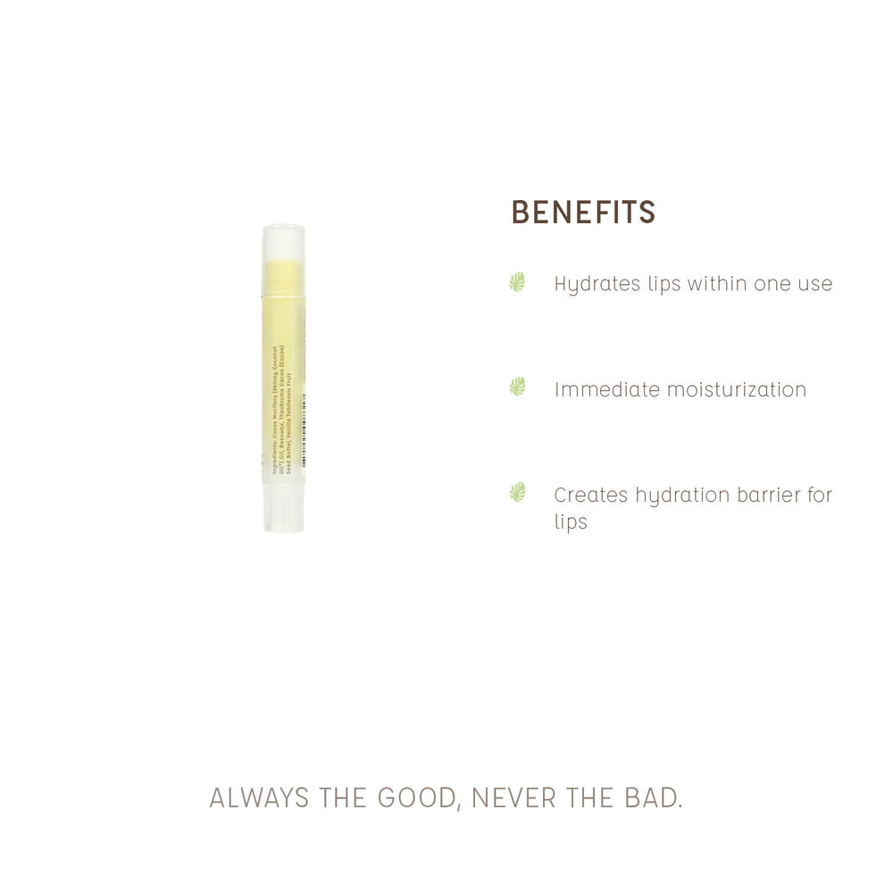 Load image into Gallery viewer, Vanilla Lip Balm - Skinny and Company - Skinny Coconut Oil