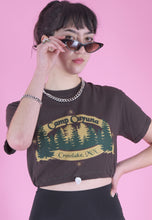 Load image into Gallery viewer, Vintage Reworked Crop T-Shirt in Brown with Crosslake Print in S