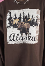 Load image into Gallery viewer, Vintage 90s Sweatshirt Jumper in Brown with Alaska Print in L