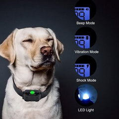 Electric remote Dog Training Collar Waterproof Rechargeable