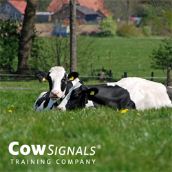 CowSignals® Chapter 3: The Farm Workshop - From the Feed Alley
