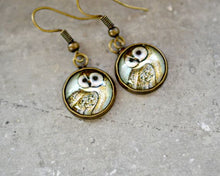 Load image into Gallery viewer, Owl Dangle Earrings - Jax Allen Designs