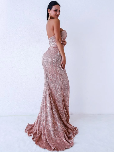 Eliza Sequins Blush Gown
