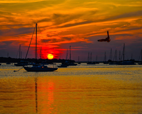 Port Jefferson Sunset