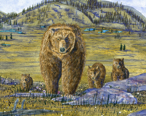 Morning Stroll, Grizzly Family