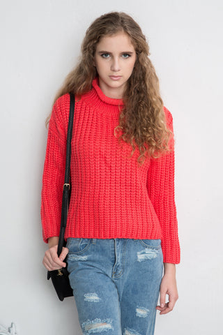 Shalex Chunky Jumper with Turtle Neck