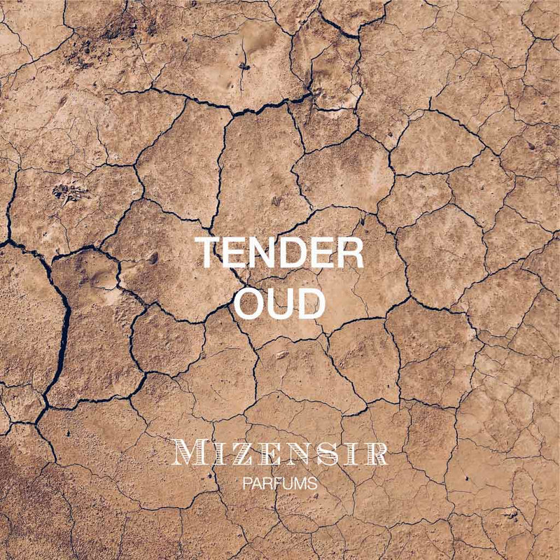 TENDER OUD | Recharges