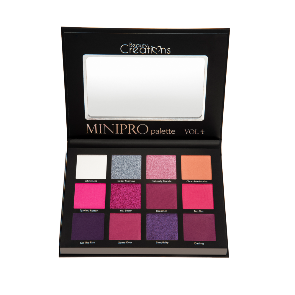 BC Mini Pro Vol 4 Eyeshadow Palette