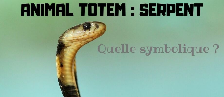 Animal Totem : Le Serpent