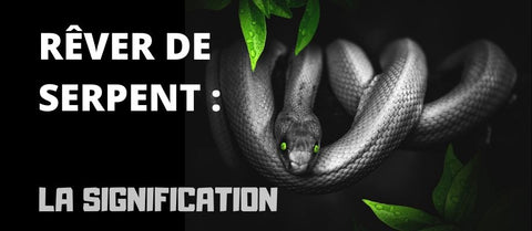 article Rêver de Serpent