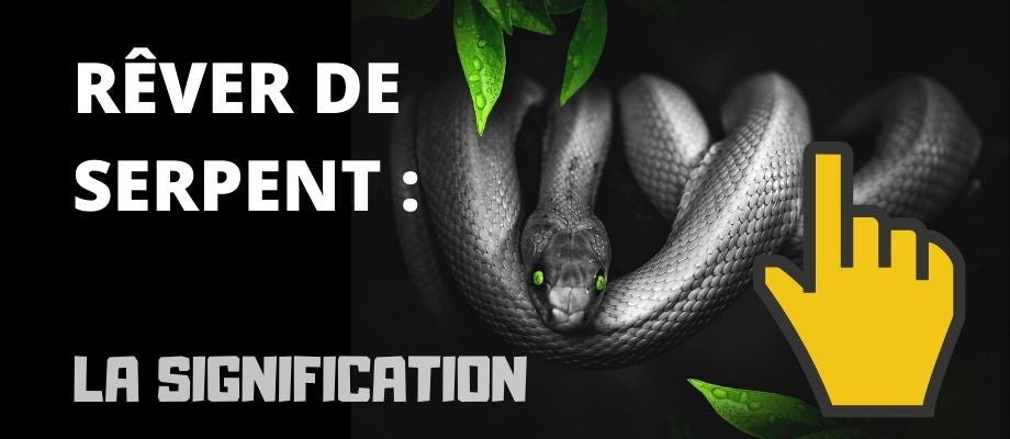 article de blog rêver de Serpent