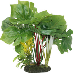 Tropical Gardens Split Green Leaf Philodendron