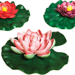 Floating Lily Pad Variety Pack