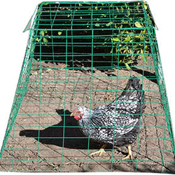 Pyramid Poultry Wire Cage