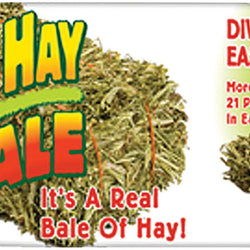 Natural Timothy Hay Bale