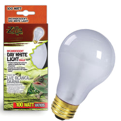 Day White Light Incandescent Bulb
