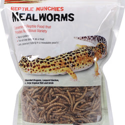 Reptile Munchies Mealworms