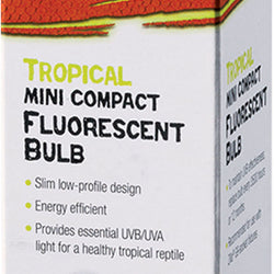 Mini Compact Fluorescent Bulb - Tropical