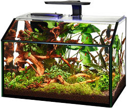 Shrimp Aquarium Kit Led