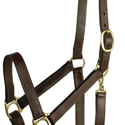 Stable Halter With Snap