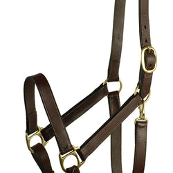 Leather Halter