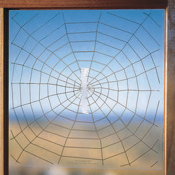 Window Warning Web