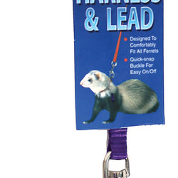 Ferret Harness And Lead