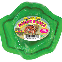 Hermit Crab Bright Bowls Water And Food Dish