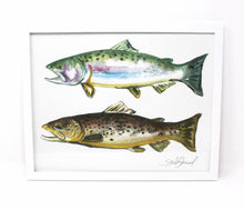 Load image into Gallery viewer, 11x14 Outdoorsy Wall Art Print of a Rainbow Trout and Brown Trout